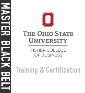 Master Black Belt Program: Training and Certification